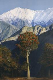 The Himalayan Collection